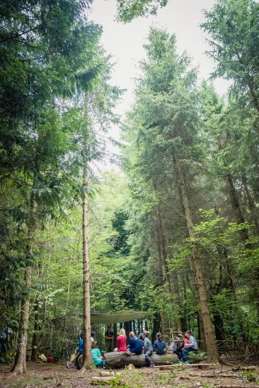 hayley wood-105